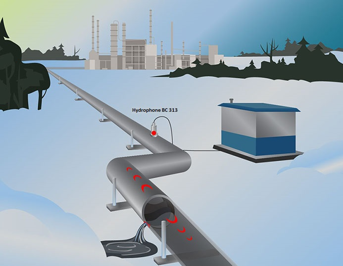 Hydrophone BC 311 - control of sealed vessels or pipelines structural integrity, leak detection