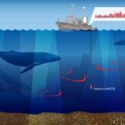 Hydrophone-BC-312-by-ZETLAB-Company-marine-mammals-studies-1-180x180