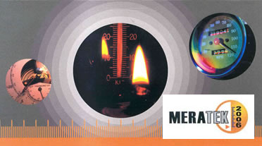 MERATEK-2006